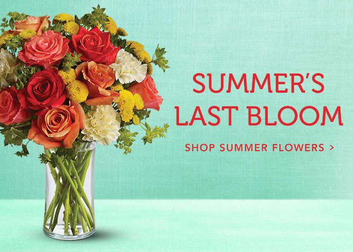 Shop Summer Flowers