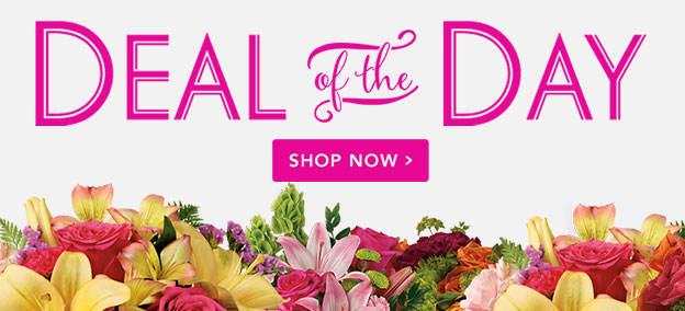 Offre du jour - Fleurs fraîches saisonnières à un prix spécial.
