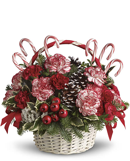 Christmas Flower Arrangements.Candy Cane Christmas