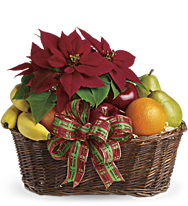 Fruit and Poinsettia Basket, picture