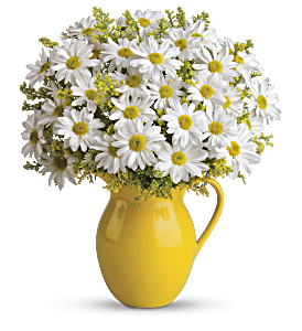 Teleflora's Sunny Day Pitcher of Daisies, picture
