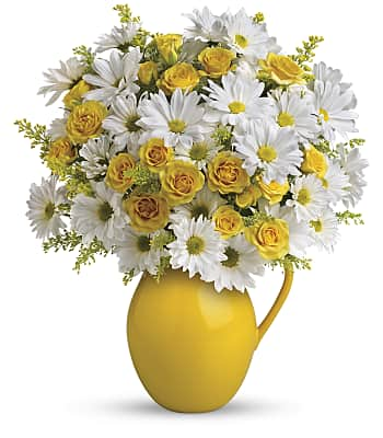 Teleflora's Sunny Day Pitcher of Daisies Flowers