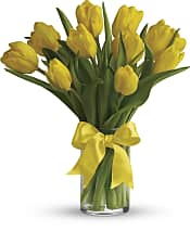 Sunny Yellow Tulips Flowers