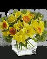 Spring Favorite Flowers