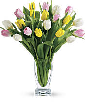 Teleflora's Tulip Treasure PM Flowers