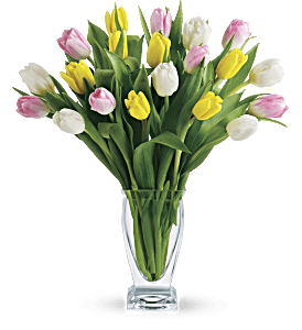 Teleflora's Tulip Treasure PM, picture