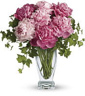 Perfect Peonies Flowers