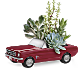 Dream Wheels '65 Ford Mustang by Teleflora, picture