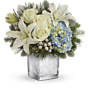 Teleflora's Silver Snow Bouquet Flowers