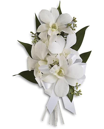 Graceful orchids corsage flowers graceful orchids corsage flower graceful orchids corsage flowers mightylinksfo
