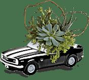 Teleflora's Chevy Camaro Plant Garden Plants