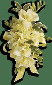 Let Love Shine Corsage Flowers