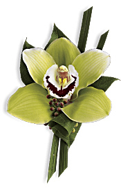 Green Orchid Boutonniere Flowers