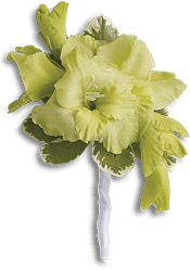 Grand Gladiolus Boutonniere Flowers