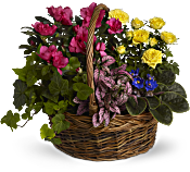 Blooming Garden Basket Flowers