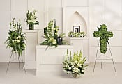 Tranquil Peace Collection Flowers