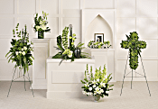 Teleflora's Tranquil Peace Collection Flowers