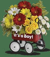 Baby's Wow Wagon  - Boy Flowers