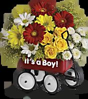 Baby's Wow Wagon by Teleflora - Boy Flowers