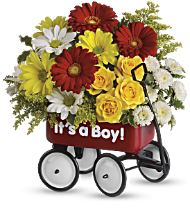 Baby's Wow Wagon by Teleflora - Boy, picture