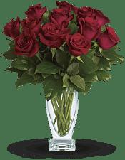 Rose Classique - Dozen Red Roses Flowers