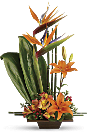 Teleflora's Exotic Grace Flowers