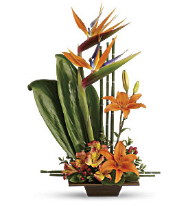 Teleflora's Exotic Grace, picture