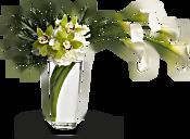 Moondance Flowers