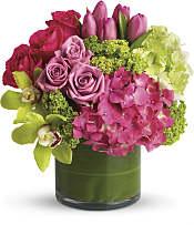 New Sensations Flowers