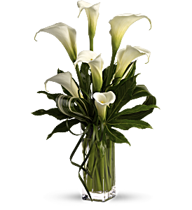 My Fair Lady by Teleflora, picture