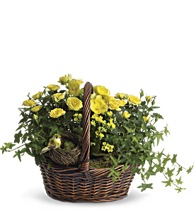 Yellow Trio Basket, picture
