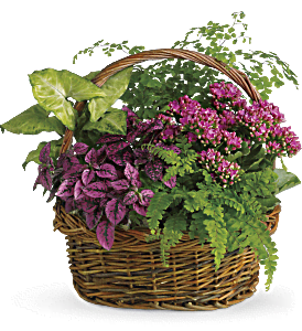 Secret Garden Basket, picture