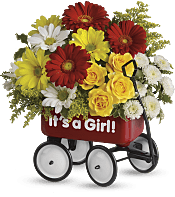 Baby's Wow Wagon  - Girl Flowers