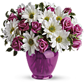 Teleflora's Pink Daisy Delight Flowers