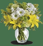 Brightly Blooming Flowers