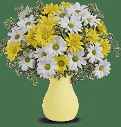 Upsy Daisy Flowers