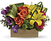 Teleflora's Shades Of Brilliance Bouquet, picture