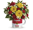 Campbell's� Healthy Wishes by Teleflora