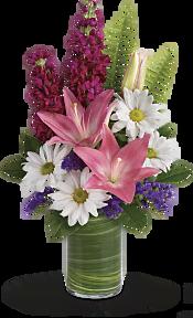 Playful Daisy Bouquet Flowers
