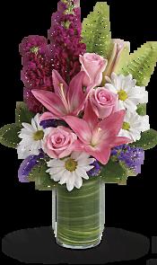 Playful Daisy Bouquet DX Flowers