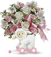 Sweet Little Lamb - Baby Pink Flowers