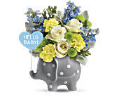 Teleflora's Hello Sweet Baby - Blue, picture