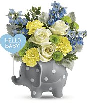 Hello Sweet Baby - Blue Flowers