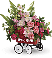 Teleflora's Welcome Beautiful Bouquet Flowers