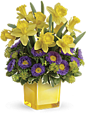 Teleflora's Playful Springtime Daffodil Bouquet Flowers