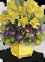 Teleflora's Playful Springtime Daffodil Bouquet Flowers