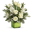 Teleflora�s Winter Pop Bouquet