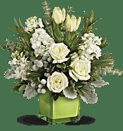 Teleflora's Winter Pop Bouquet Flowers