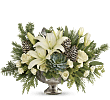 Teleflora�s Winter Wilds Centerpiece
