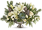 Teleflora's Winter Wilds Centerpiece Flowers